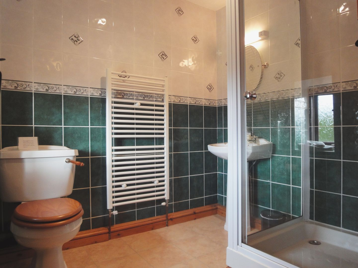 Lower Venton Chagford Shower Room