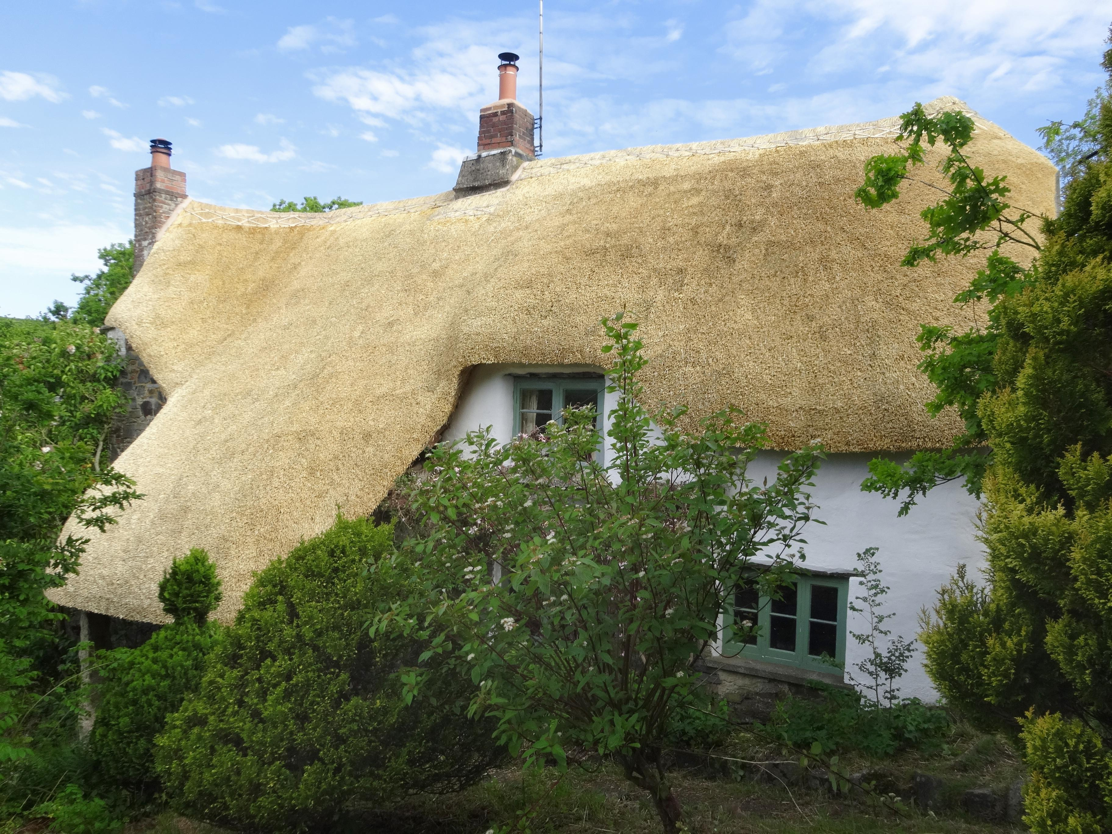 Holiday Cottage Reviews for Honeyford Cottage - Holiday Cottage in Chagford, Devon