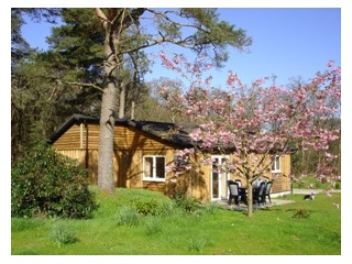 Holiday Cottage Reviews for Airdeny Chalets - Holiday Cottage in Taynuilt, Argyll and Bute