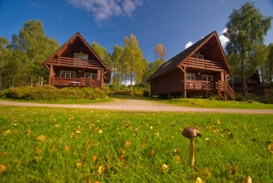 3 star Woodland Lodges