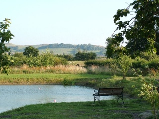 Holiday Cottage Reviews for Chestnut Cottage - Holiday Cottage in Southam , Warwickshire