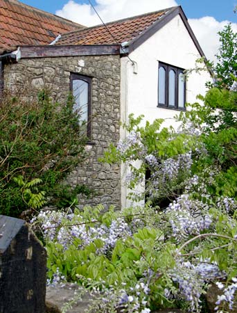 Holiday Cottage Reviews for Oolitic Springs - Holiday Cottage in Dundry, Somerset