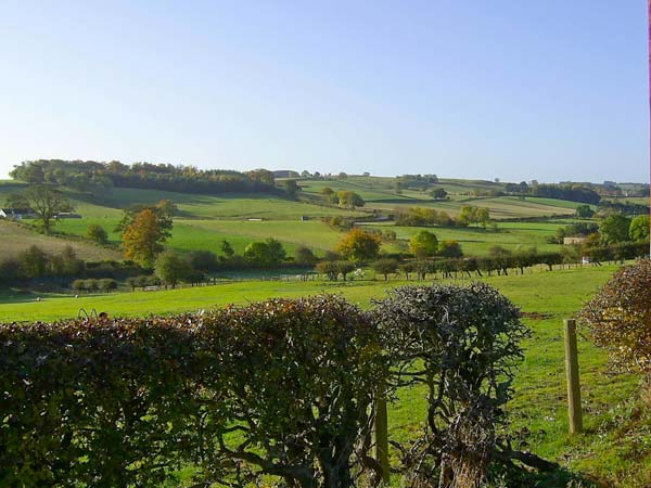 Holiday Cottage Reviews for Sunnyside - Holiday Cottage in Selkirk, Scottish Borders