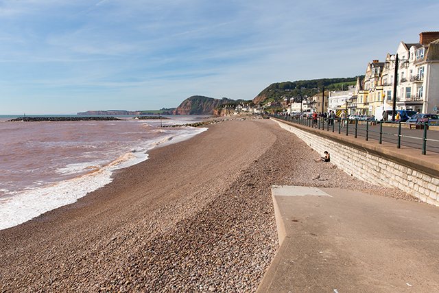 Holiday Cottage Reviews for Bray Cottage - Holiday Cottage in Sidmouth, Devon